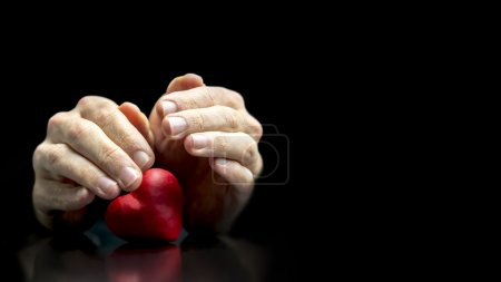 Photo for Man cupping his hands protectively over a romantic red heart as he tenderly nurtures his love for his sweetheart on Valentines Day, with copyspace over a dark background - Royalty Free Image