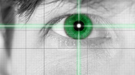 Close up Green Eye on Grid Lines