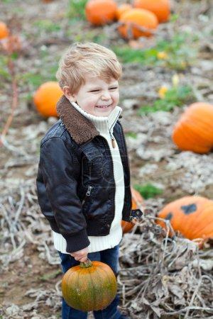 Little toddler boy on pumpkin field