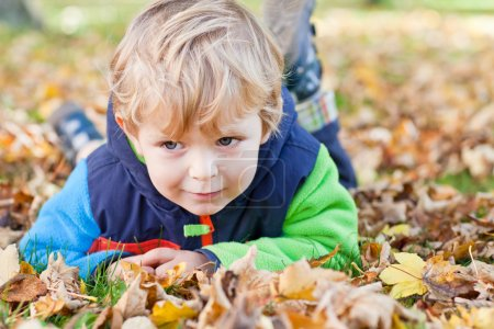 Photo for Little toddler boy in autumn park with foliage and chestnut - Royalty Free Image
