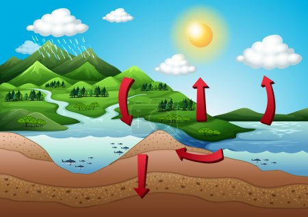 Illustration for Illustration of the water cycle - Royalty Free Image