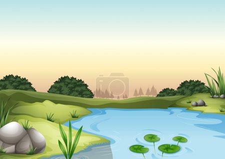 An ecosytem