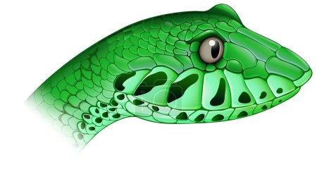A scary snake