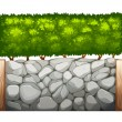 Illustration of a stonewall with plants on a white...