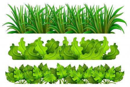 Illustration for Illustration of the different plants on a white background - Royalty Free Image