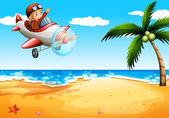 An airplane at the beach