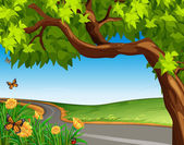 Obrovský strom na silnici