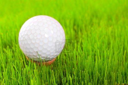 Golf ball on tee over a green.
