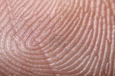 Photo pour Empreinte digitale - microphotographie extrêmement rapprochée - image libre de droit