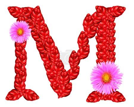 Photo pour Lettre de feuilles rouges et fleurs d'aster isolés sur blanc. grand alphabet pour la Saint-Valentin salutations ou cosmétiques brochures et publicités - image libre de droit