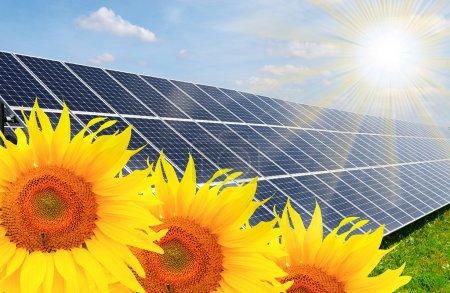 Foto de Paneles de energía solar en un campo de girasol contra el cielo soleado. - Imagen libre de derechos