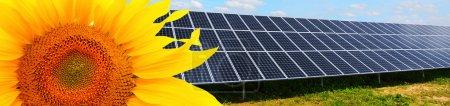 Foto de Paneles de energía solar en un campo de girasol contra el cielo soleado . - Imagen libre de derechos