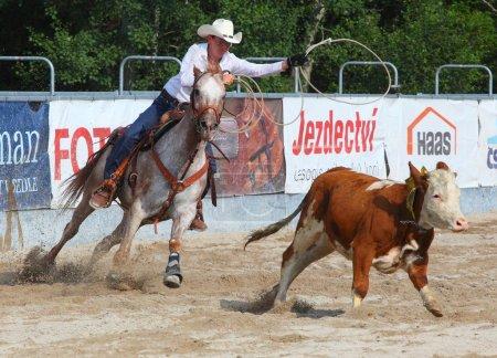 Unidentified Cowboy
