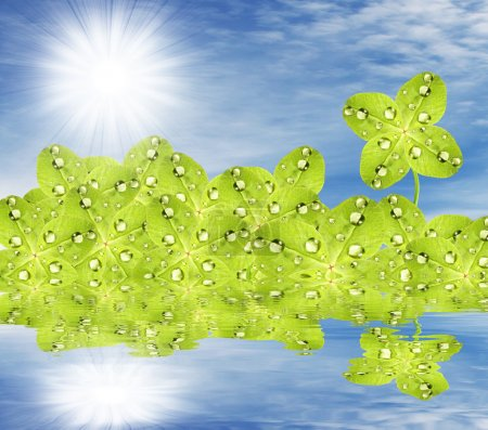 Dewy Green Quarter-foil on water level