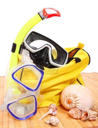 Snorkel, mask and seashells