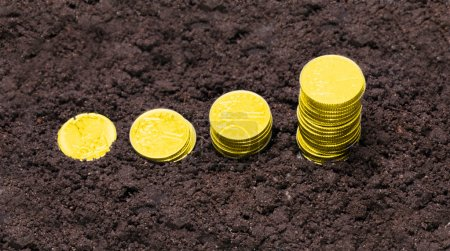 Golden coins growing from soil