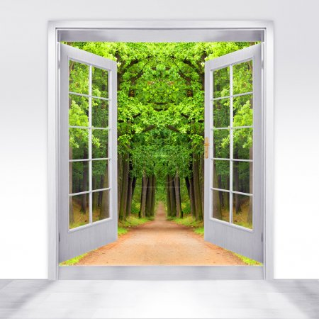 Opened door to early morning in green forest