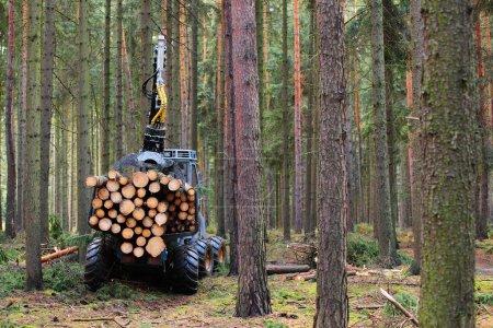 Photo pour La moissonneuse travaillant dans une forêt . - image libre de droit
