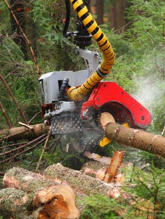 Photo pour La moissonneuse travaillant dans une forêt. Gros plan avec du DOF peu profond . - image libre de droit
