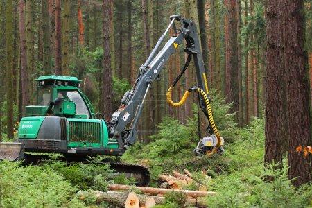 Unidentified lumberjack with modern harvestor