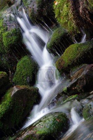 Photo pour La plus belle cascascascade Bila strz à White Creek - Parc national Sumava République tchèque Europe - image libre de droit