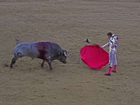 SAN FERNANDO -SEPTEMBER 26: Juan Jose Padilla in action during a