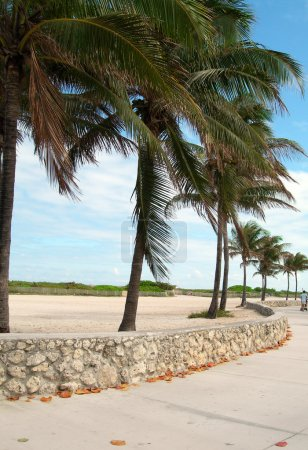 pedestrian promenade south beach miami florida