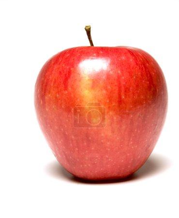 pinova apple also called pinata sonata or corail fresh fruit