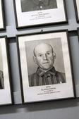 Zemřelého vězně Osvětimi nacisty