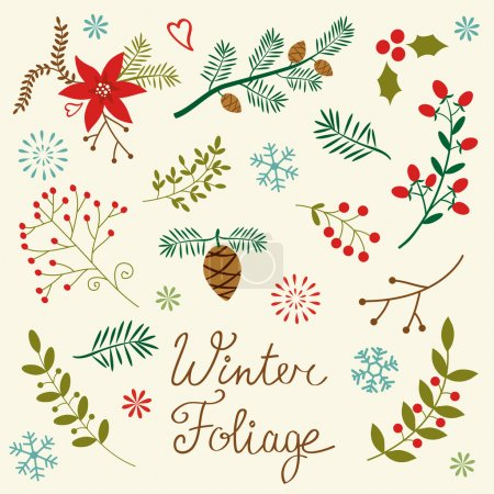 Illustration for A beautiful winter foliage collection - Royalty Free Image