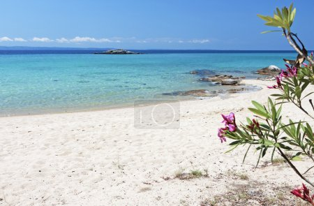 Scenic beach of Kalogria at Sithonia of the Halkid...