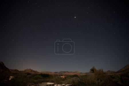 Cabo Pulmo stars