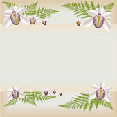 Orchid background