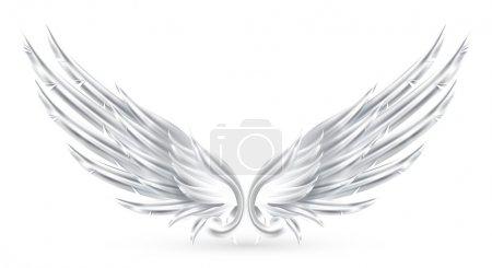 Illustration pour Ailes blanches, eps10 - image libre de droit