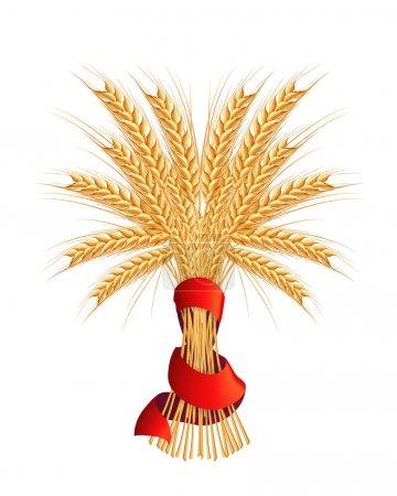 Illustration pour Gerbe de blé, vector - image libre de droit