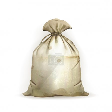 Bag, old-style vector isolated