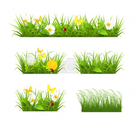 Illustration for Grass set - Royalty Free Image