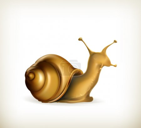Snail, shellfish, helix