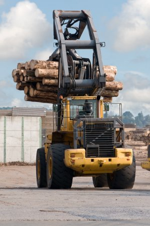 Photo pour Débusqueuse transportant des grumes à la scierie - image libre de droit