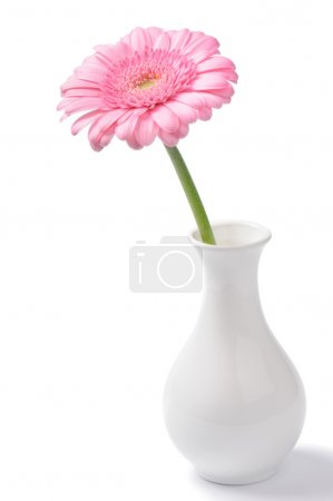 Photo for Vase with pink chrysanthemum isolated on white - Royalty Free Image