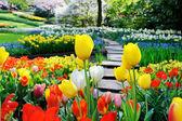 Cesta v parku na jaře