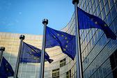 """Постер, картина, фотообои """"флаги eu перед европейской комиссией"""""""