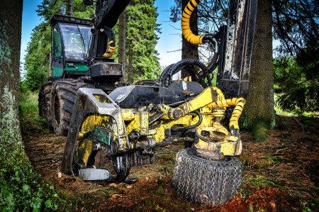 Photo pour Moissonneuse de travail en forêt - image libre de droit