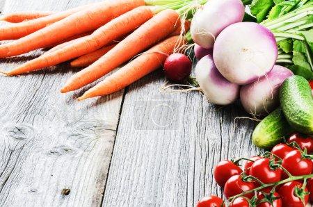 Frame with fresh organic vegetables