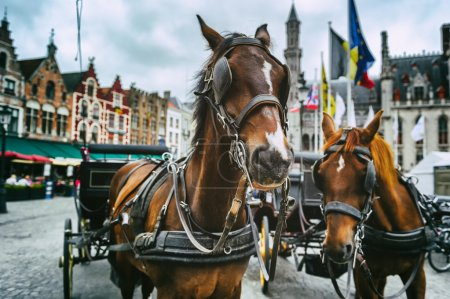Horse-drawn carriages in Bruges