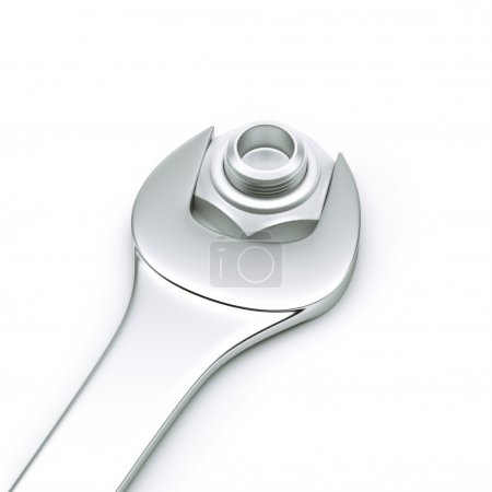 Spanner with nut