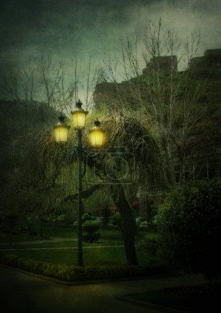 lantern in the night city