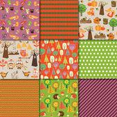 Autumn Collection
