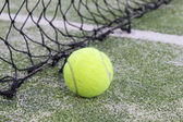 Tennis or paddle ball on synthetic grass of paddle court