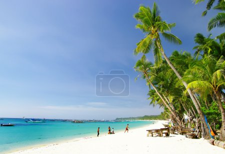 Photo for Perfect tropical beach - Royalty Free Image